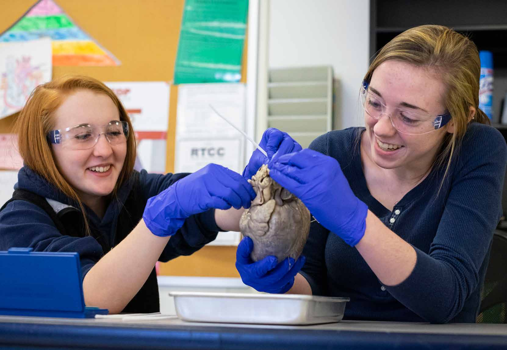 RTCC Nursing Students work on a pigs brain